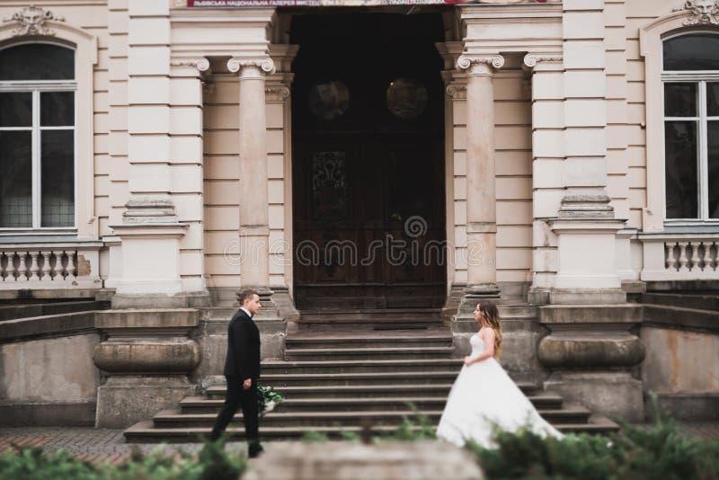 Kaukasische gl?ckliche romantische junge Paare, die ihre Heirat feiern outdoor stockfotos