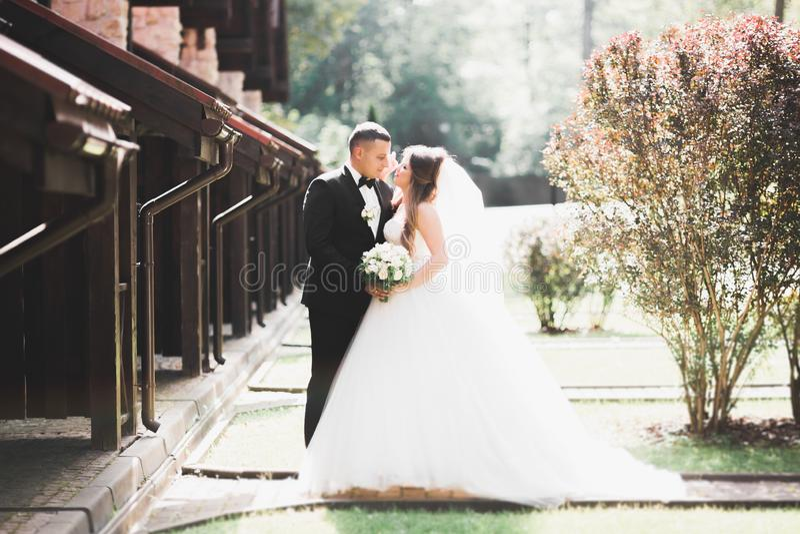 Kaukasische gl?ckliche romantische junge Paare, die ihre Heirat feiern outdoor stockfotografie