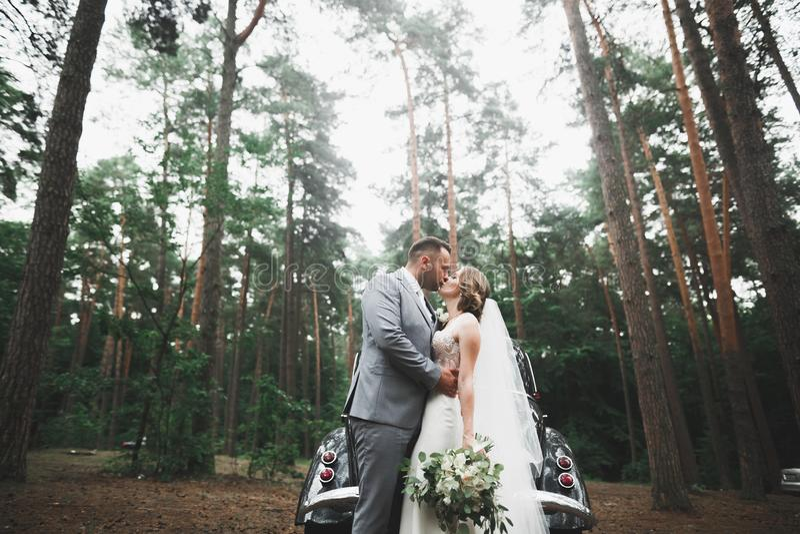 Kaukasische gl?ckliche romantische junge Paare, die ihre Heirat feiern outdoor lizenzfreies stockbild