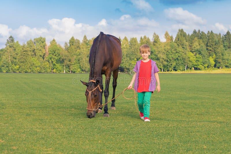 Kaukasische jongensgedragingen in een gelegenheid van een hoog paard op het kortharige groene gebied in zonnige dag Op een achter stock foto