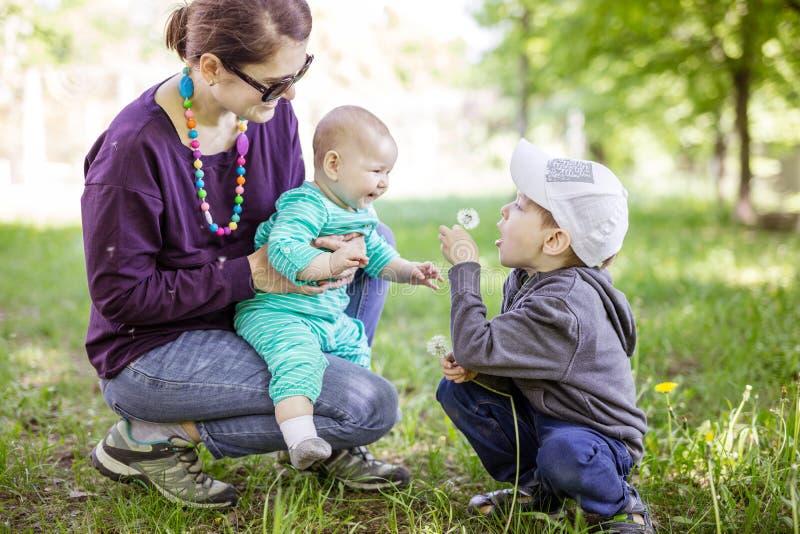 Kaukasische junge Frau mit der Babytochter und Vorschulsohn, die schönen Tag im Park genießen stockfotografie
