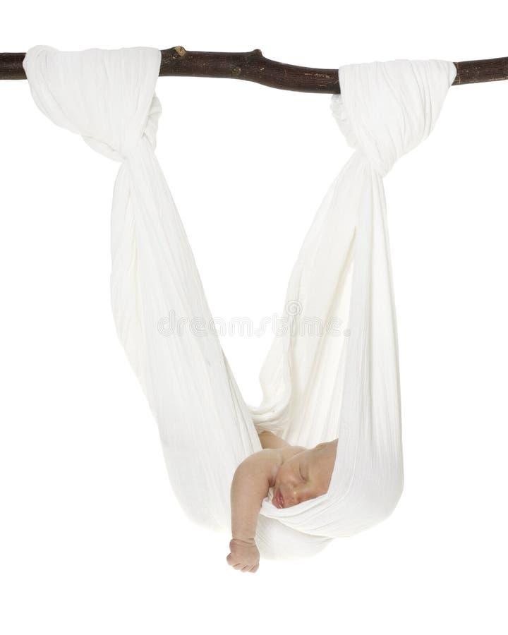 Kaukasische Pasgeboren In De Slinger Van De Hangmat Stock Foto