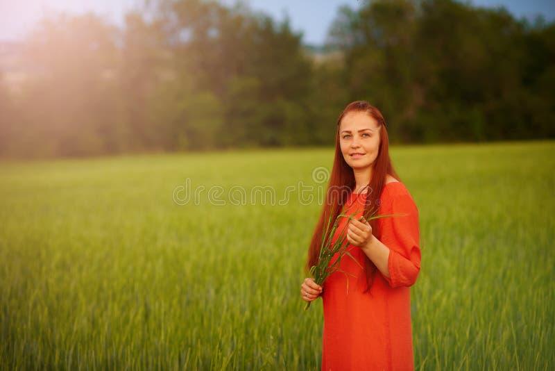 Kaukasische rothaarige Frau in einem roten Kleid gehend auf ein Bauernhoffeld mit Weizen bei Sonnenuntergang an einem Sommertag Z stockbilder