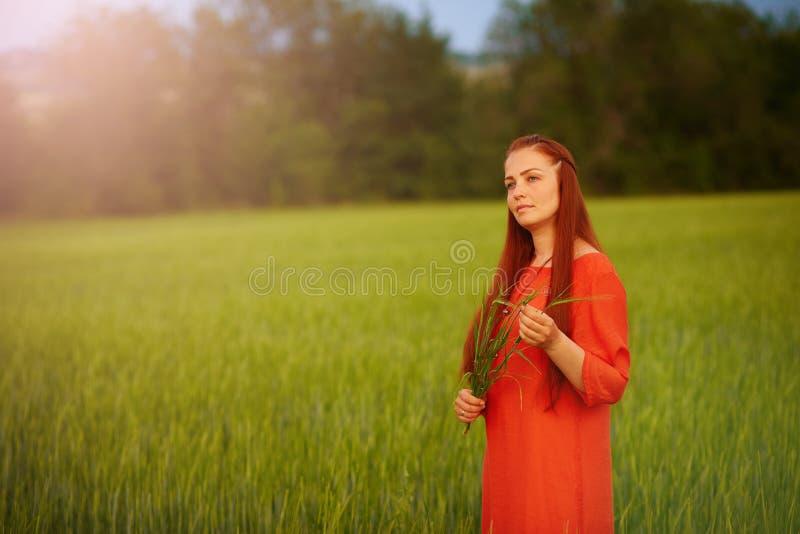 Kaukasische rothaarige Frau in einem roten Kleid gehend auf ein Bauernhoffeld mit Weizen bei Sonnenuntergang an einem Sommertag Z stockfotos