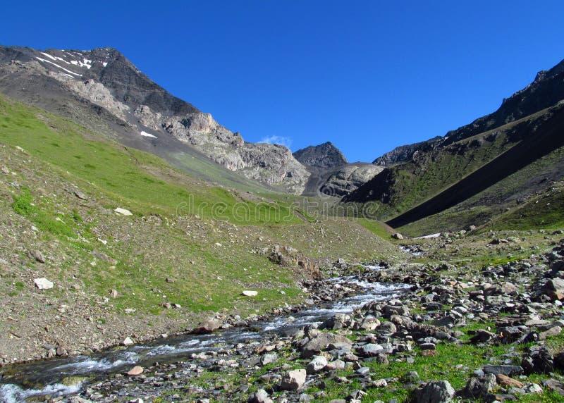 Kaukaska halna zielona dolina zdjęcie stock