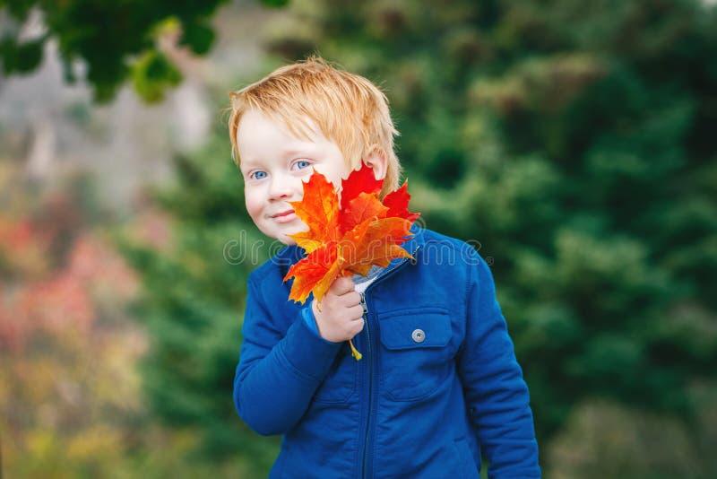 Kaukaska miedzianowłosa chłopiec trzyma jesień spadek z niebieskimi oczami opuszcza w parku fotografia stock