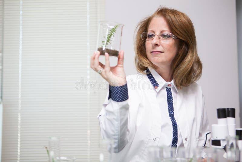 Kaukaski żeński naukowiec sprawdza rośliny po chemicznego traktowania obrazy royalty free
