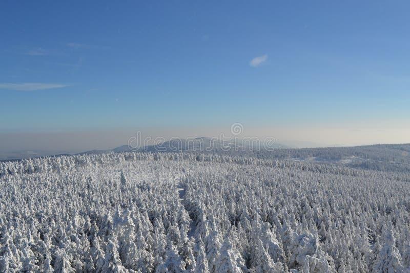 Kaukasus-Berge, Georgia Gudauri lizenzfreie stockbilder