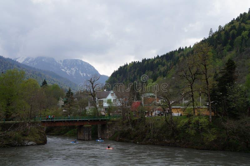 Kaukasus reserv royaltyfri fotografi