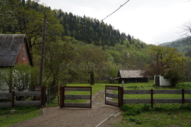 Kaukasus reserv royaltyfria foton