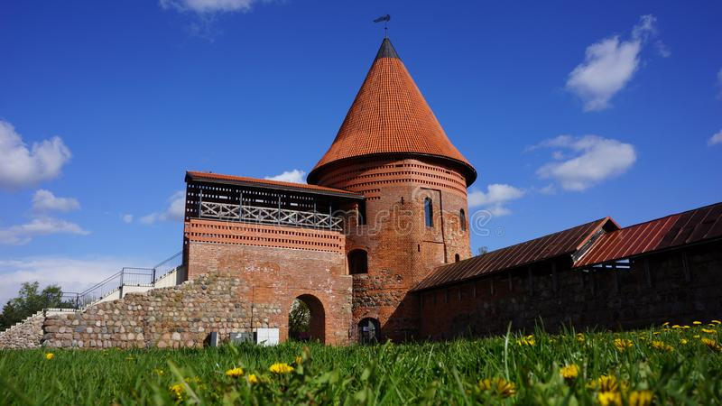 Kaunas castle. In Lithuania with the dandelion field on foreground royalty free stock photography