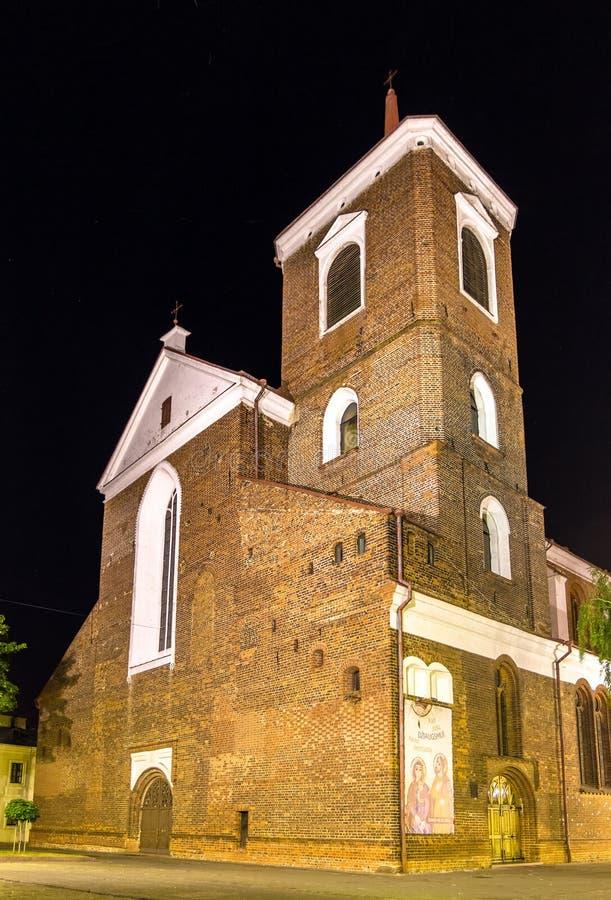 Kaunas Katedralna bazylika przy nocą fotografia royalty free