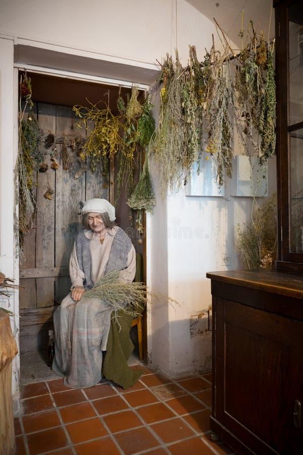 Kaunas, Lituânia - 12 de maio de 2017: Manequim da mulher do herborista no museu da história da medicina e da farmácia Kaunas, Li imagem de stock