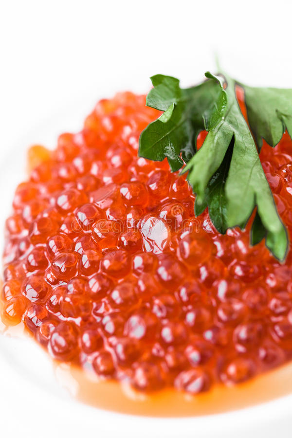 kaviar fotografering för bildbyråer