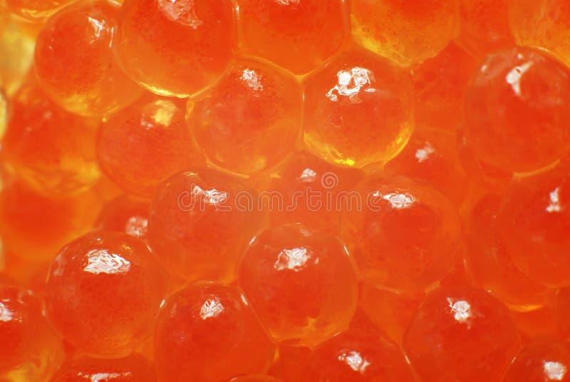 Kaviar lizenzfreie stockfotografie