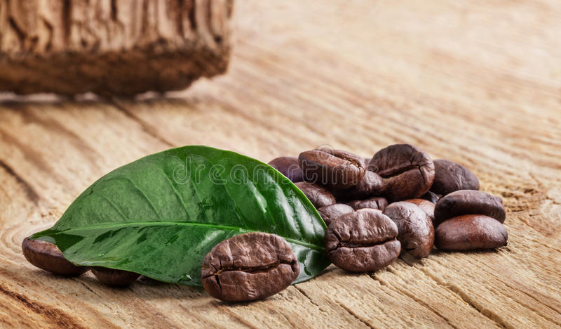 Kaw adra i zielony liść zdjęcie stock