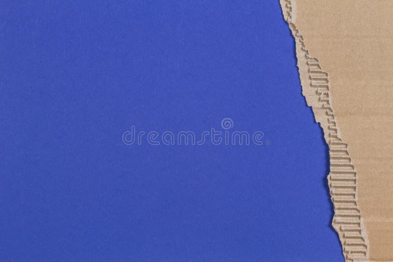 Kawałek panwiowy karton z poszarpaną papierową krawędzią na błękitnym tle fotografia royalty free