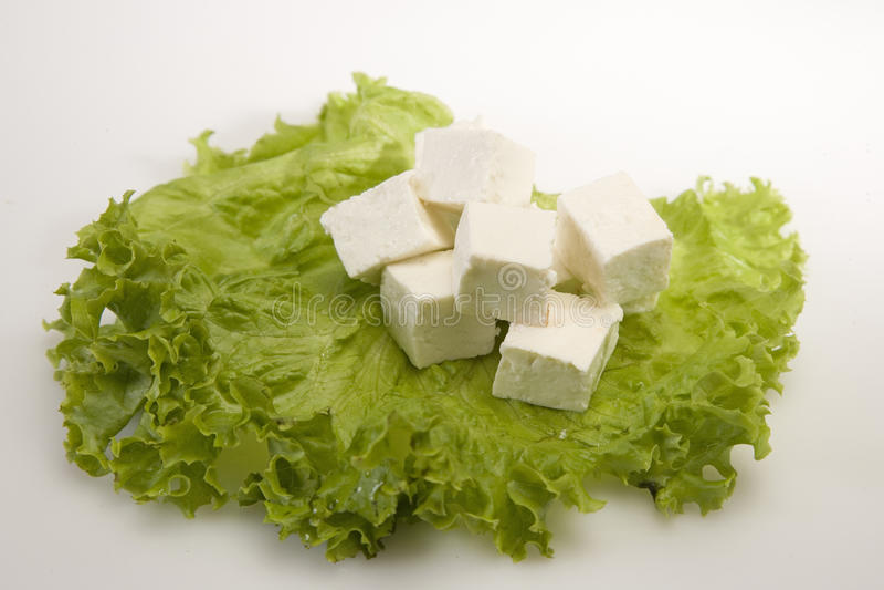 Kawałek ser lub Paneer obraz royalty free