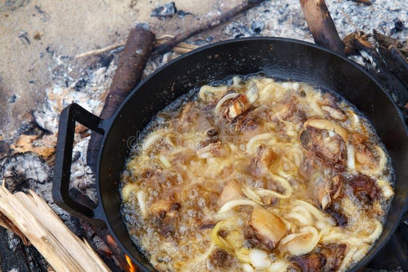 Kawałki jagnięciny z cebulą są smażone w oleju gotowanym na ogniu zdjęcie royalty free