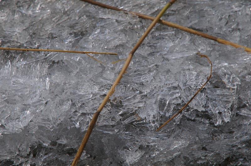 Kawałki lód i czytają zdjęcia stock