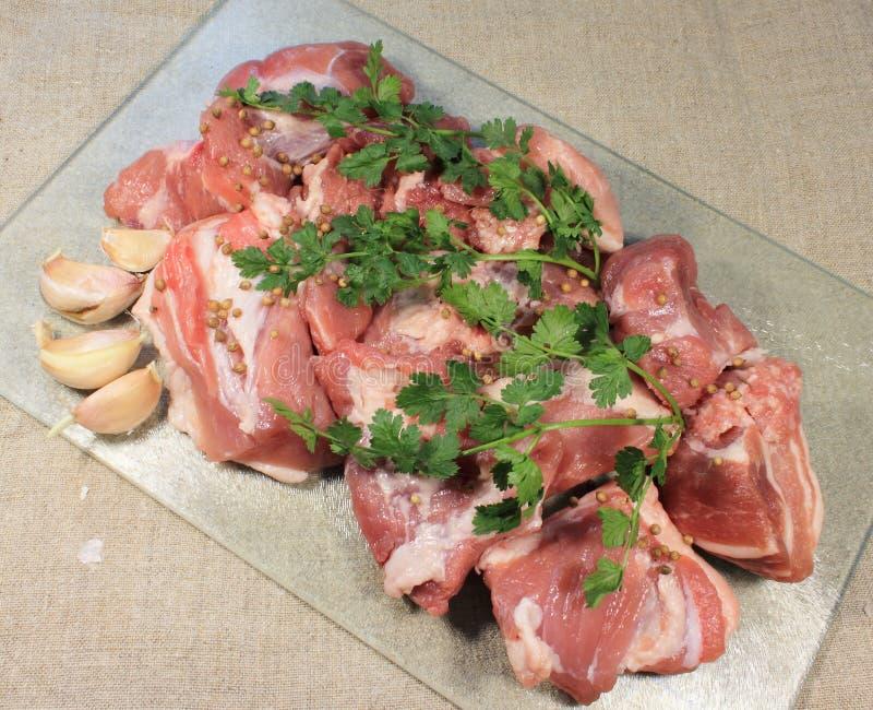 Download Kawałki mięso z pikantność zdjęcie stock. Obraz złożonej z kawałek - 53791022