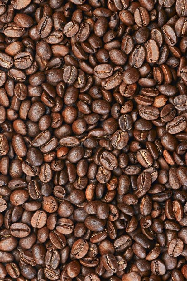 kawa obrazy stock