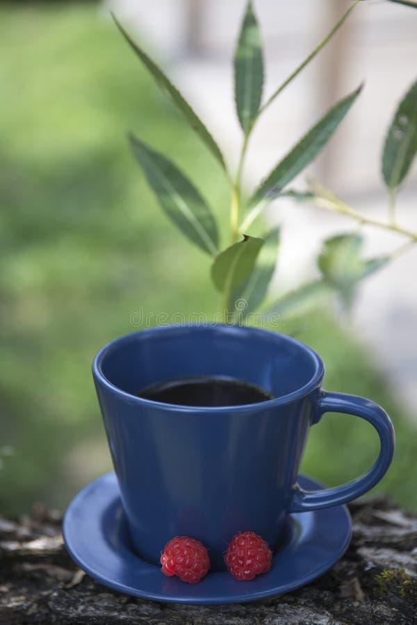 Kawa i malina obrazy stock