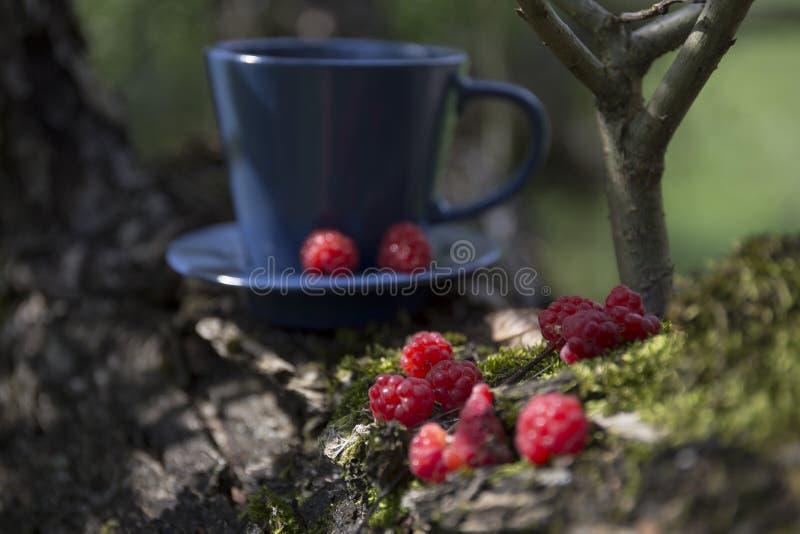 Kawa i malina na mosie zdjęcia stock