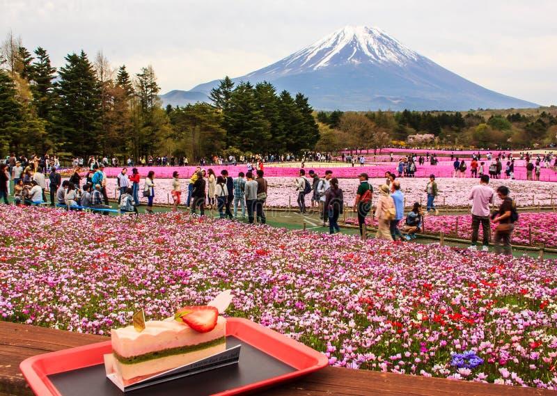 KAWAGUCHIKO, JAPAN-MAY 07,2017: Los turistas gozan del postre delante de la vista del diverso shiba coloreado hermoso Sakura del  imágenes de archivo libres de regalías