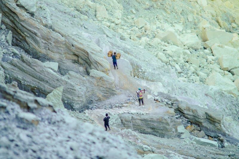 Kawah Ijen, Indonesische arbeiders draagt zwavel van caldera Kawah royalty-vrije stock fotografie