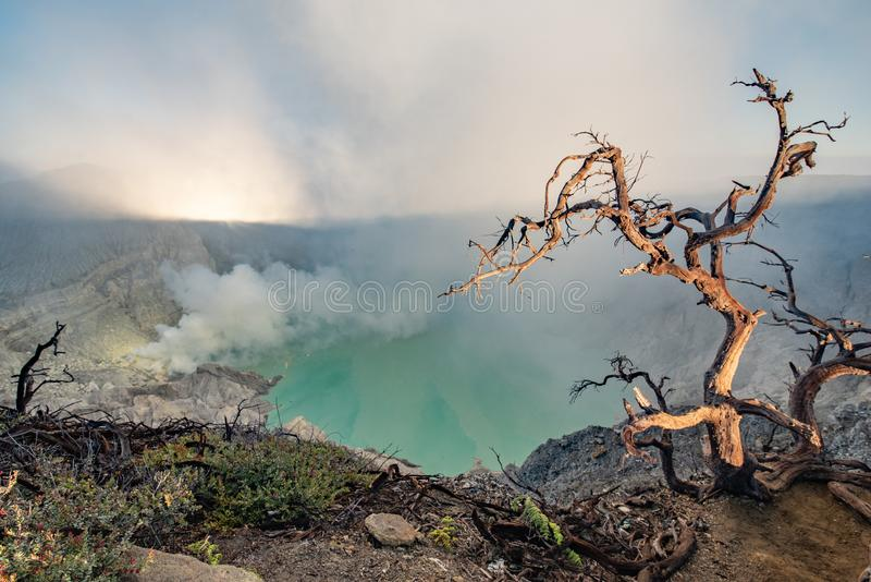 Kawah Ijen volcano complex is a group of composite volcanoes in the Banyuwangi Regency of East Java, Indonesia.Kawah Ijen at. Sunrise. The most famous tourist stock images