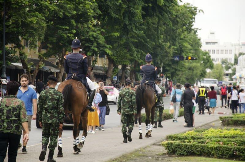 Kawaleria King's Chroni pułku jeździeckiego konia dla (Queen's) zdjęcie royalty free