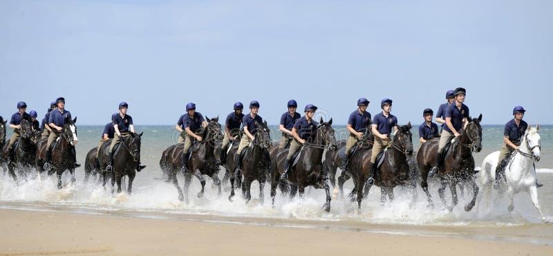 kawalerii gospodarstwo domowe zdjęcie stock