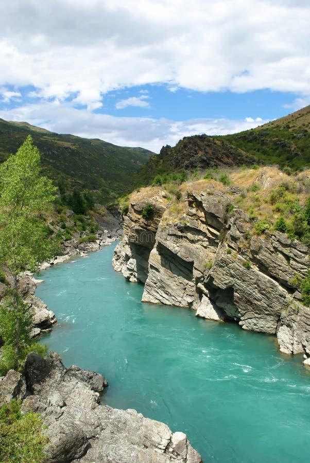 Kawarau rzeka Nowa Zelandia i las zdjęcia royalty free