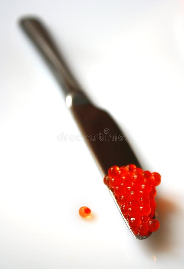 Kawior czerwień