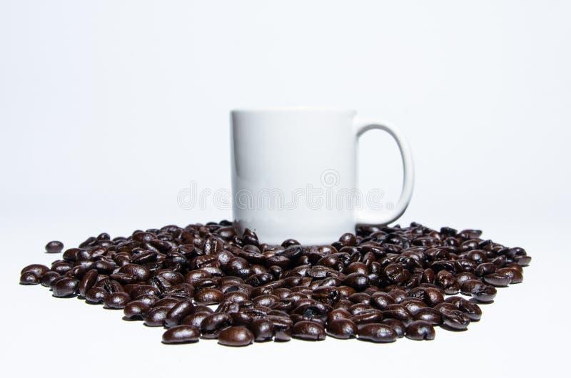 Kawowa fasola i kubek na białym tle fotografia stock