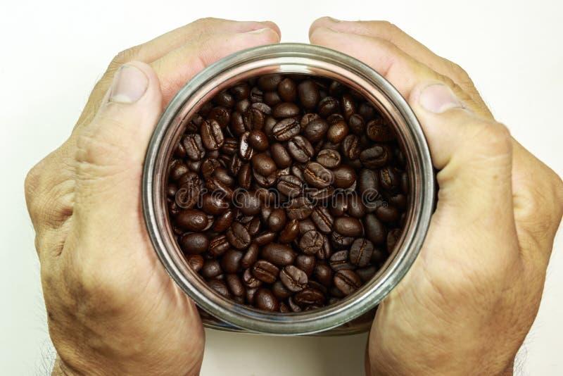 Kawowa fasola w ręce obrazy stock