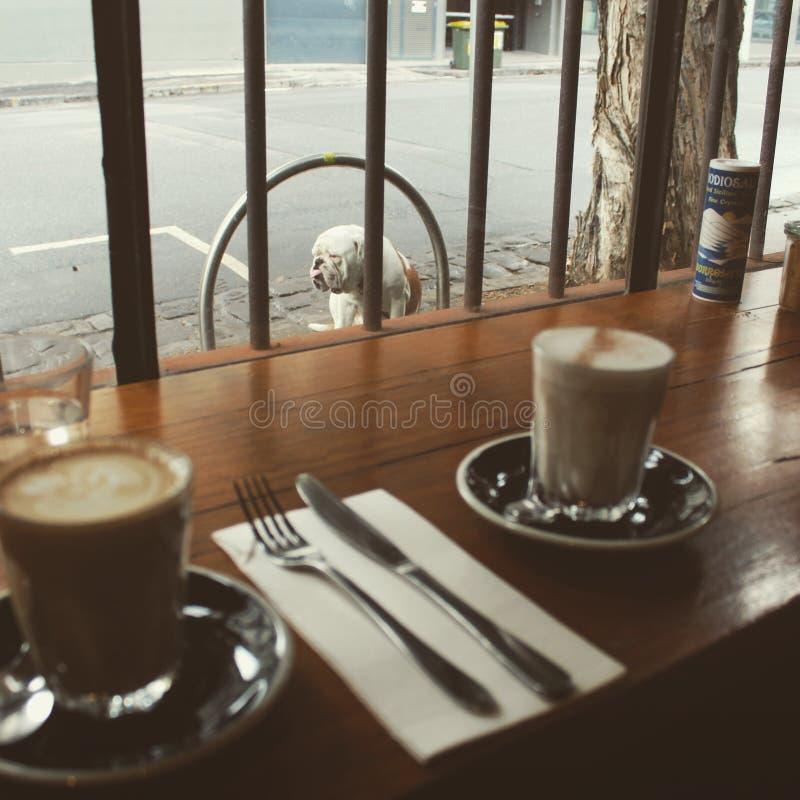 Kawowa kultura Melbourne zdjęcia royalty free