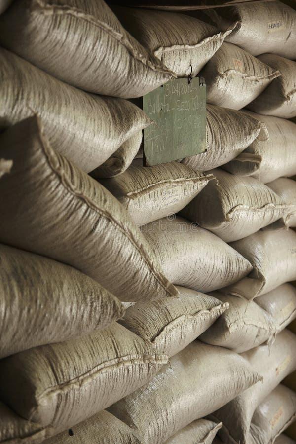 Kawowa plantacja, Boquete, Panama19 zdjęcia royalty free