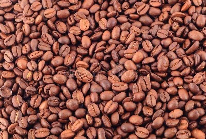 Kawowe czarne fasole zamknięte w górę tła fotografia royalty free