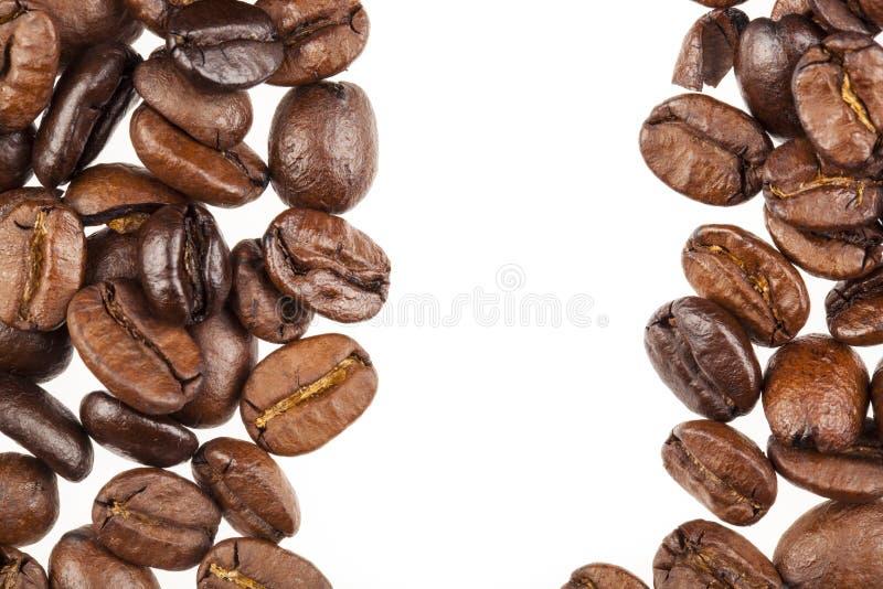 Kawowe Fasole obrazy stock