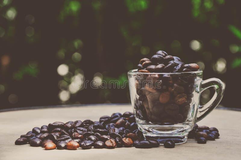 Download Kawowe fasole zdjęcie stock. Obraz złożonej z espresso - 33124328