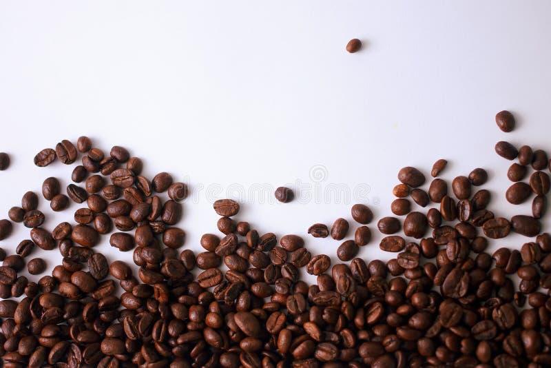 Kawowe fasole Africa obraz stock