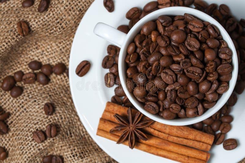 Kawowe fasole, cynamon i aniseed w filiżance, zdjęcia stock