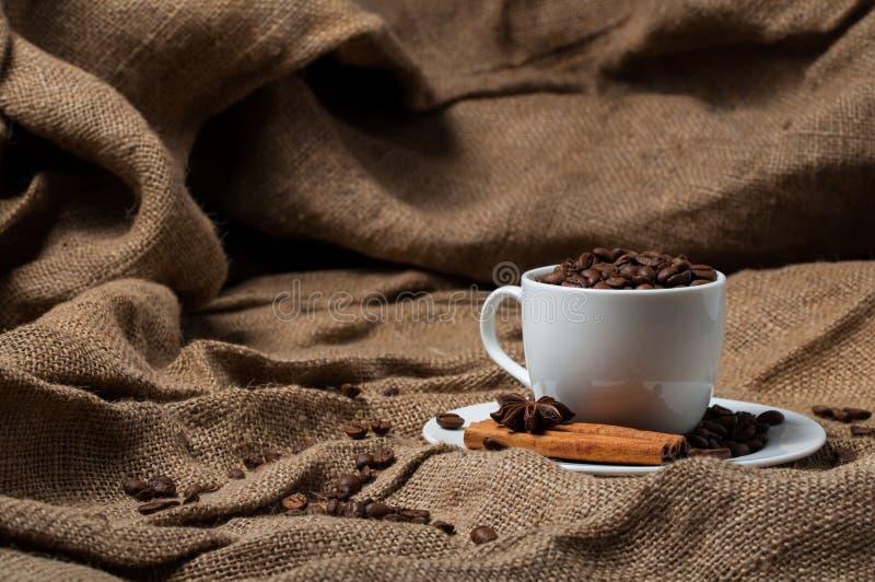 Kawowe fasole, cynamon i aniseed w filiżance, obraz stock