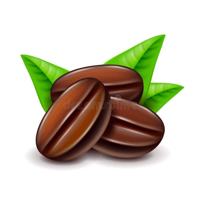Kawowe fasole na białym wektorze ilustracja wektor