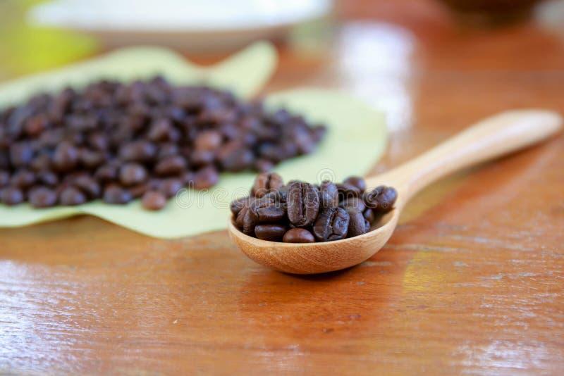 Kawowe fasole na drewnianej łyżce zdjęcia stock