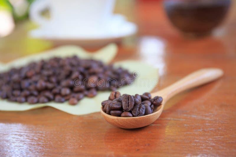 Kawowe fasole na drewnianej łyżce zdjęcie royalty free