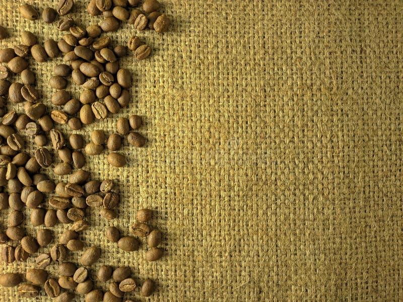 Kawowe fasole na gunny teksturze obrazy royalty free