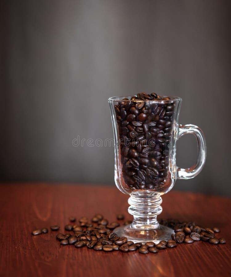 Kawowe fasole w szklanym kubku obraz stock